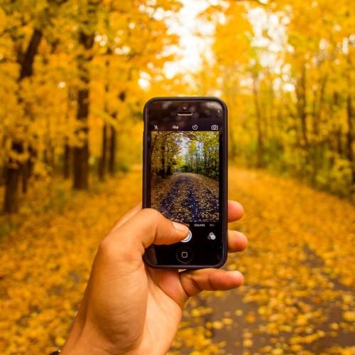 Cámaras de móviles vs cámaras reflex: ¿Hay tanta diferencia?